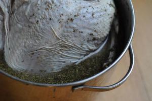turkey in the brine